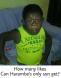 Child of Harambe