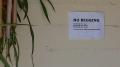 Cailen: Front Porch 2017 - No Begging