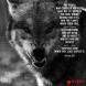 Creator Wolf