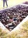 Slave Trade Libia