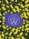 blue logo i
