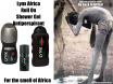 Lynx Africa